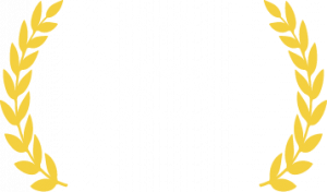 11th Best Emerging B-School in India by Times of India 2021